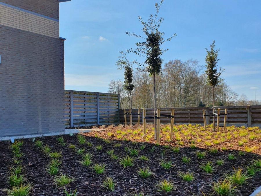 Tuinproject te Arendonk